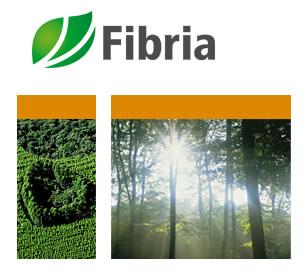 FIBRIA e Geoambiente