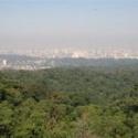 Acordo visa melhorar políticas de preservação no estado de SP