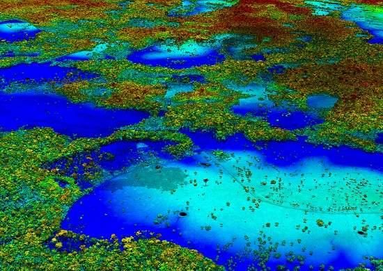 Não se trata de floresta e água: cada cor representa diferentes tipos de vegetação. Esta imagem mostra áreas de desmatamento na Amazônia peruana. [Imagem: The Carnegie Airborne Observatory]